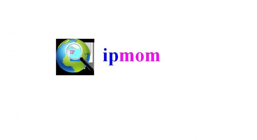 Check Your IP Address with IP Mom